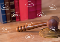 «Интернет изнутри»: Система доменных имен и предметное регулирование доменных споров